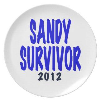 SANDY SURVIVOR 2012, Sandy survivor gifts Melamine Plate