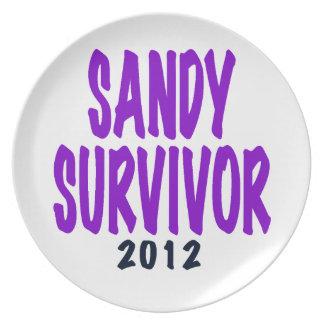 SANDY SURVIVOR 2012, Sandy survivor gifts Plate