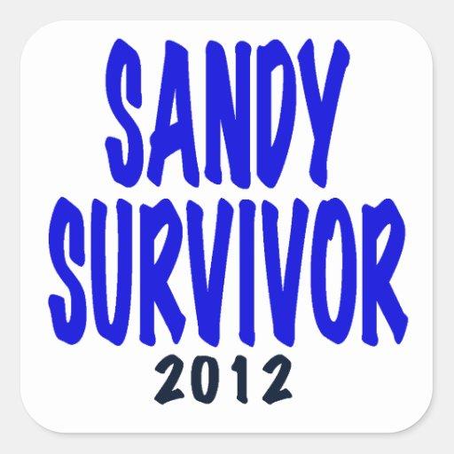 SANDY SURVIVOR 2012, Sandy survivor gifts Stickers