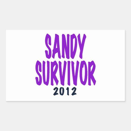 SANDY SURVIVOR 2012, Sandy survivor gifts Rectangular Stickers