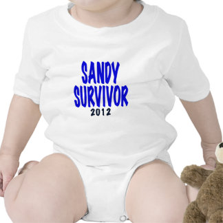 SANDY SURVIVOR 2012, Sandy survivor gifts T Shirts