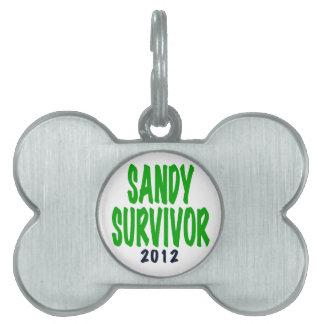 SANDY SURVIVOR, green, Sandy survivor gifts Pet Tag