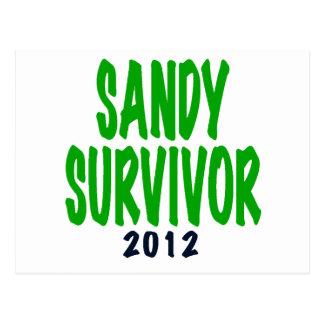 SANDY SURVIVOR, green, Sandy survivor gifts Postcard