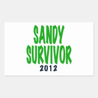 SANDY SURVIVOR, green, Sandy survivor gifts Rectangular Sticker