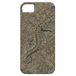 Sandy Textured Seahorse Photograph iPhone SE/5/5s Case