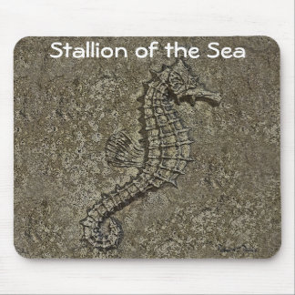 Sandy Textured Seahorse Photograph Mousepads