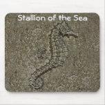 Sandy Textured Seahorse Photograph Mousepads