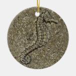 Sandy Textured Seahorse Photograph Ornaments