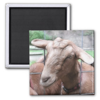 Sandy The Goat At The Gate 2 Inch Square Magnet
