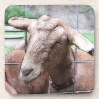 Sandy The Goat At The Gate Beverage Coaster