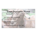 Sandy The Goat At The Gate Business Card Template