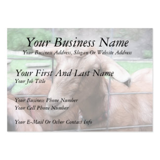 Sandy The Goat At The Gate Large Business Card