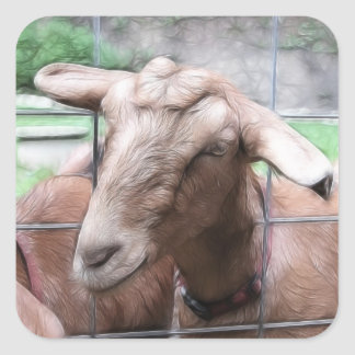 Sandy The Goat At The Gate Square Sticker