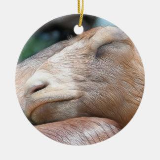 Sandy The Goat - Nap Time! Ceramic Ornament