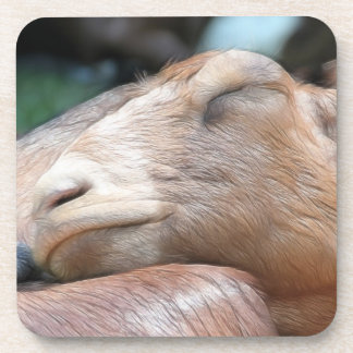 Sandy The Goat - Nap Time! Drink Coaster