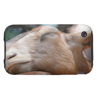 Sandy The Goat - Nap Time! iPhone 3 Tough Cases