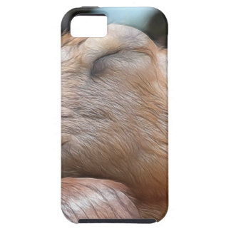 Sandy The Goat - Nap Time! iPhone SE/5/5s Case