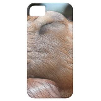 Sandy The Goat - Nap Time! iPhone SE/5/5s Case