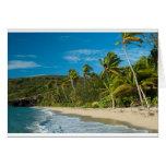 Sandy tropical beach cards