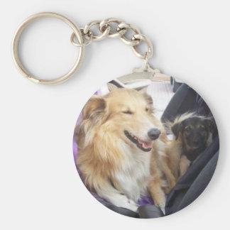 Sanfte-Hundeerziehung.com Llavero Redondo Tipo Pin