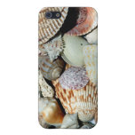 Sanibel Island Beach Shells Case For iPhone SE/5/5s