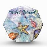Sanibel Island Watercolor Florida Art Award