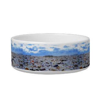 Sanibel Shells Bowl