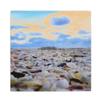 Sanibel Shells Wood Coaster