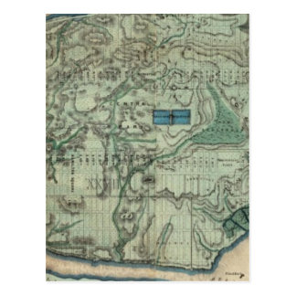 Sanitary and Topographical Map of New York City Postcard