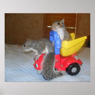 Sanjaya & Sing Sing Squirrel Poster