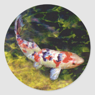 Sanke subacuático Koi Pegatina Redonda