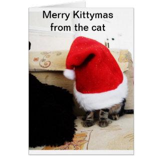 Santa 4 Paws Card