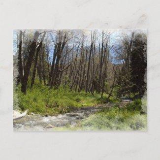 Santa Ana in Seven Oaks postcard