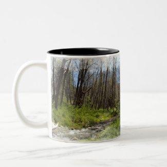 Santa Ana River Mug mug