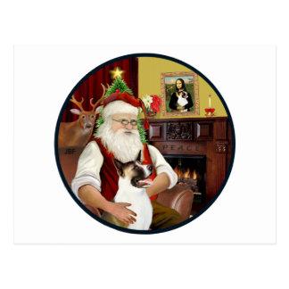 Santa and his Akita Postcard