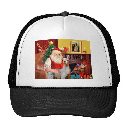 Santa and his Baby Llama Trucker Hat