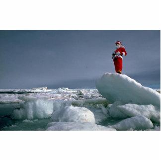 Santa at the pole photo sculpture