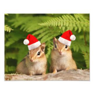 Santa Baby Chipmunks Photo Print