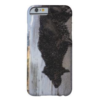 Santa Barbara, California, USA Barely There iPhone 6 Case