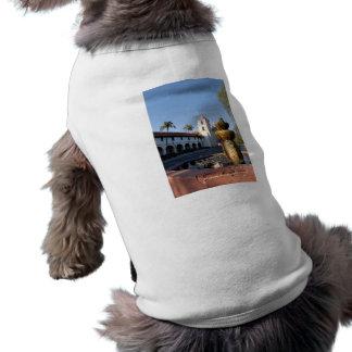 Santa Barbara Mission Fountain Dog Clothes