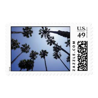 Santa Barbara Palm Trees Stamp