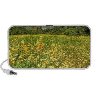 Santa Barbara Wildflowers Laptop Speakers