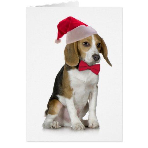 Santa Beagle Christmas Card