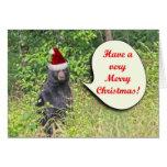 Santa Bear Wishing You a Merry Christmas Cards