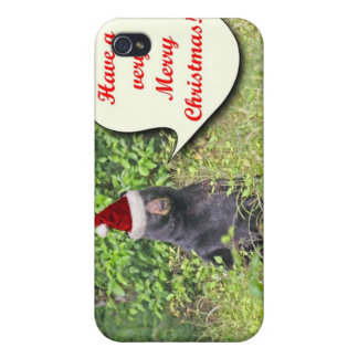 Santa Bear Wishing You a Merry Christmas Covers For iPhone 4