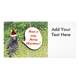 Santa Bear Wishing You a Merry Christmas Photo Card