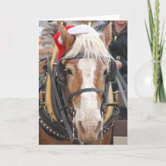 Santa Belgian card