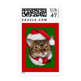 Santa Bengal Cat Postage Stamp