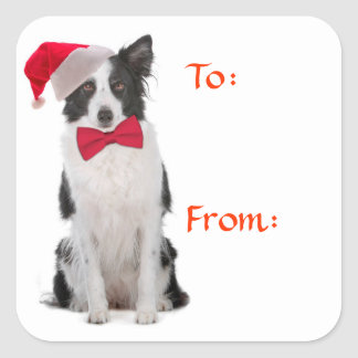 Santa Border Collie Gift Tags