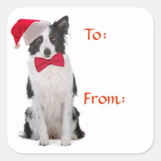 Santa Border Collie Gift Tags Square Sticker